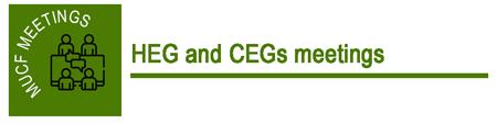 HEG and CEGs meetings
